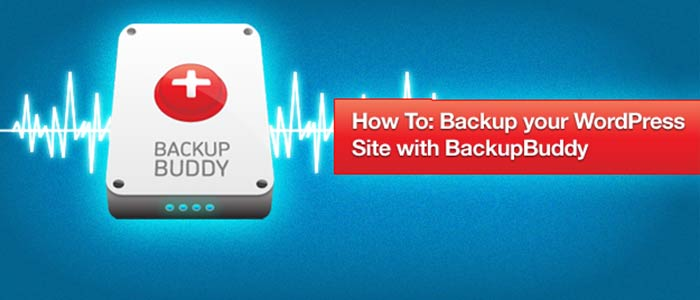 Backup Buddy must have plugin for your wordpress site